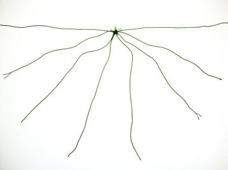 Pustna maska pajek - brezideje.si - 2a